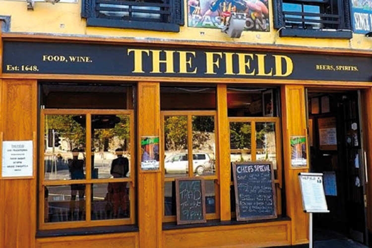 "Irish Pub Check: Kilkenny ""The Field Pub"""
