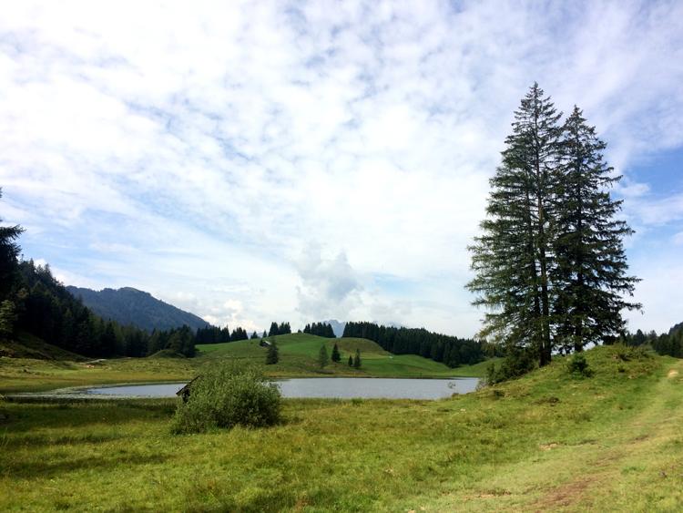 07-seewaldsee